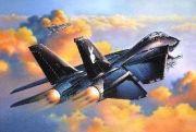 Revell Grumman F-14 A-Black Tomcat