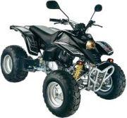 Rex Quad 250