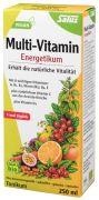 Salus Multi-Vitamin Energetikum 500 ml